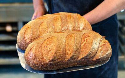 Get inspired, celebrate Real Breadweek