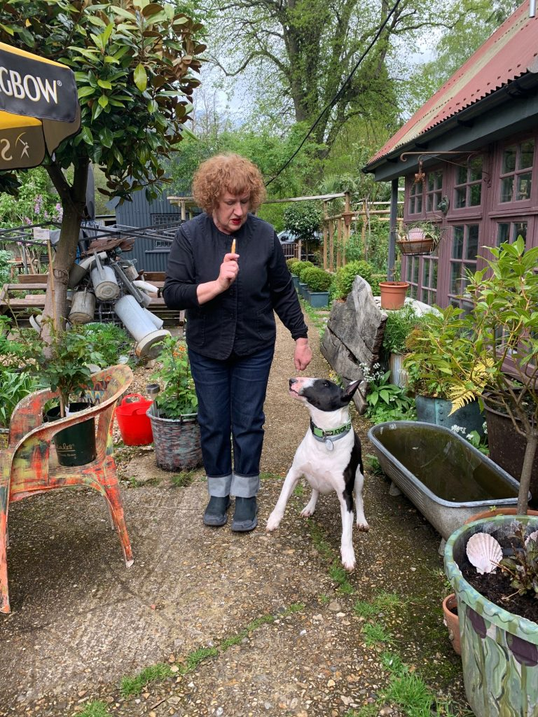 Lizzie holds a chew for Sprout, who is gazing at her with front right paw off the ground in front of a cast iron bath filled with water in Lizzie's garden.