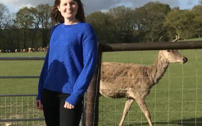 New Deer Park Prepares to Open at Sky Park Farm