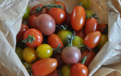 A heritage tomato dish from local Petersfield market
