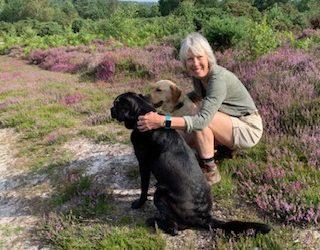 Suzie's Wilde Walk at Liss