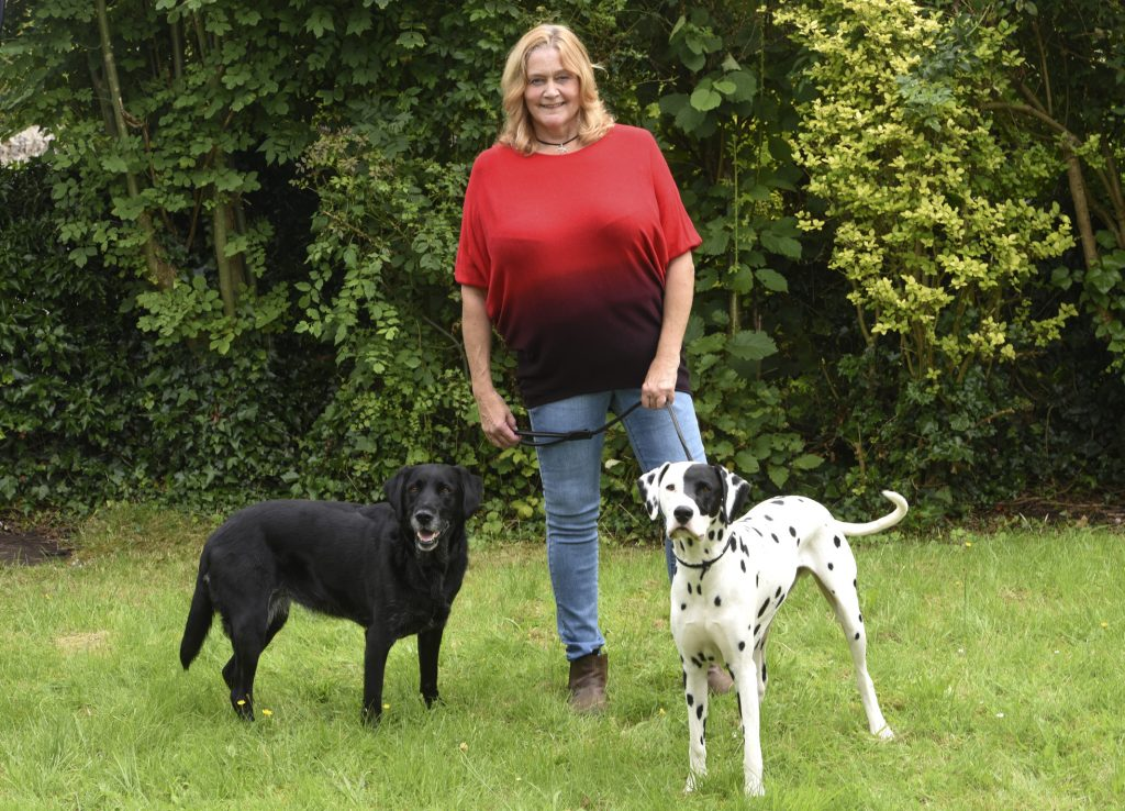 Black labrador on left, half patched Dalmatian on the right of smiling owner Jan who wears a red ombre sweater and jeans.